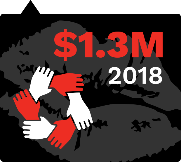 In 2018 we Will Raise $1.3 Million
